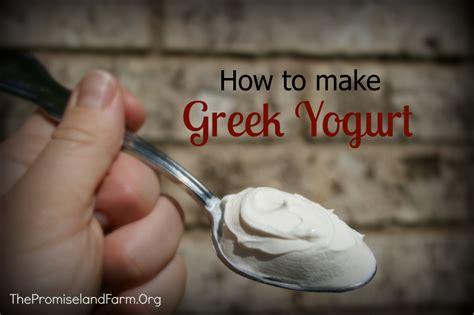 how to make yogurt at home cheesemaking part 6