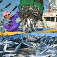 climate change could make fish shrink by up to 30 daily climate change threatens nation s agriculture the japan