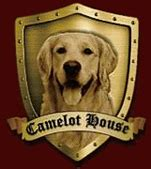 the dog house charlotte nc dog therapy training nc dog therapy training by camelot