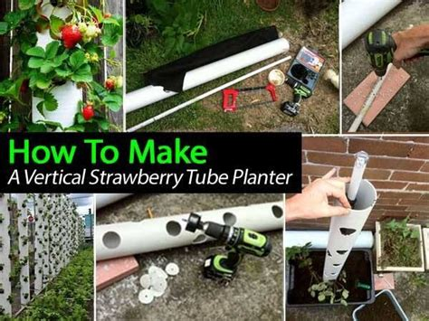 How To Make A Vertical Planter by Http Plantcaretoday How To Make A Vertical