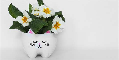 Pot Planters by Diy Cat Planter From A Plastic Bottle