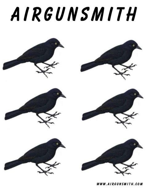 printable pheasant targets printable bird targets