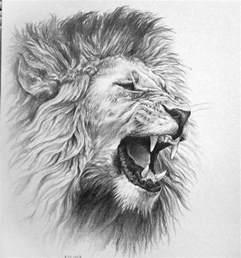 best 25 lion tattoo design ideas on pinterest mandala