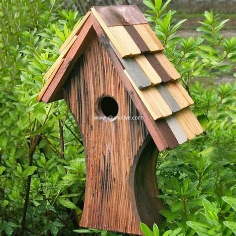 cute bird houses designs cute diy ideas for birdhouses diy motive