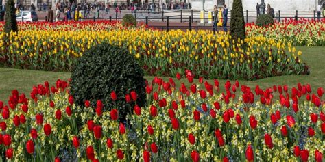 i giardini piu belli i 300 giardini pi 249 belli d italia cralt magazine