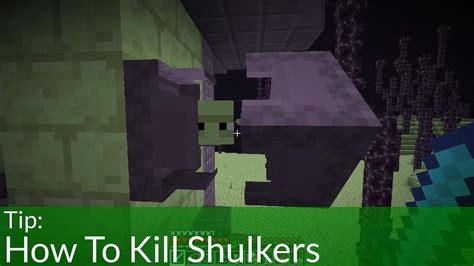 minecraft tips and tricks how to kill the wither boss how to kill shulkers in minecraft youtube