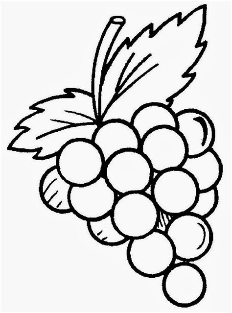 imagenes de uvas para imprimir uva para colorir uva para colorir