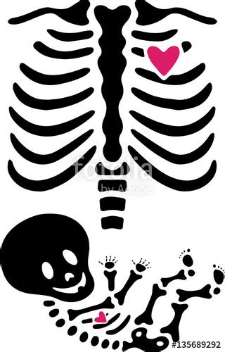 x ray pattern vector quot female skeleton pregnant x ray quot stock image and royalty