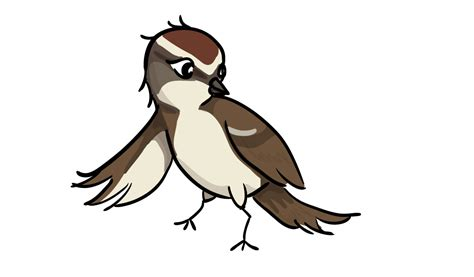 sparrow clipart sparrow clipart lark pencil and in color sparrow clipart