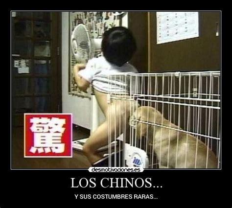 imagenes tumblr raras los chinos desmotivaciones