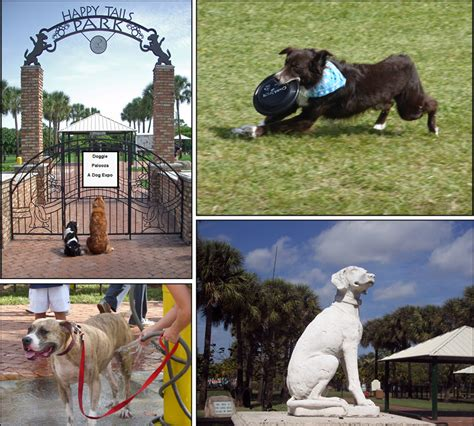 happy tails puppies happy tails park at seminole park city of plantation