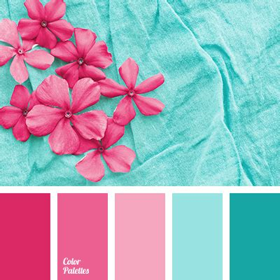 pink color combination turquoise and pink color palette www pixshark com
