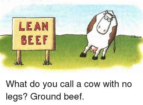 what do you call a with no legs 25 best memes about cow with no legs cow with no legs memes