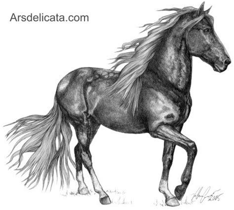 imagenes de toros para dibujar a lapiz arsdelicata online gallery stock page three