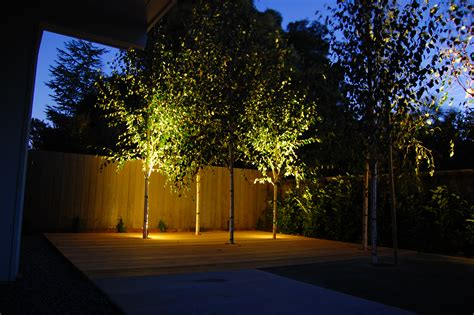 lights on landscape a switch for evening excitement the edison outdoor lighting package