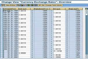 sap currency exchange rate sap consulting development
