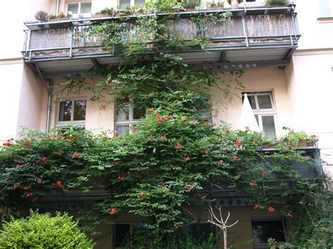 originelle gartenmöbel balkon decor teich