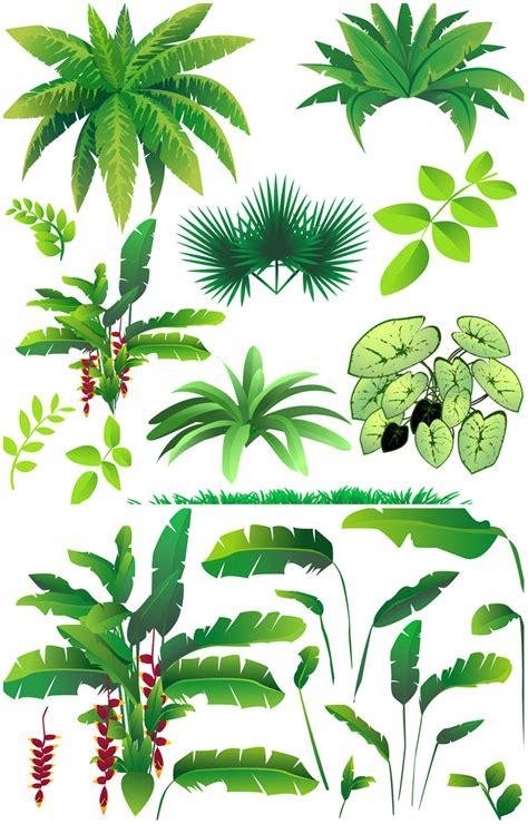 Dschungel Pflanzen by Jungle Plants Clipart