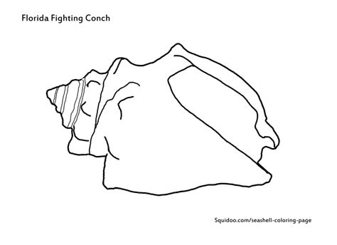 queen conch coloring page conch shell outline www imgkid com the image kid has it