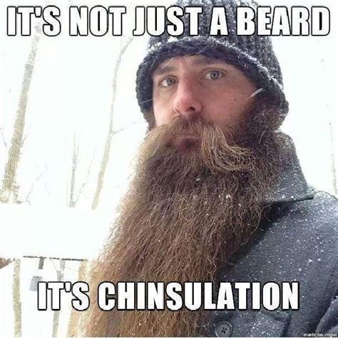 Beard Meme Funny - beard facts beard humor and pics pinterest