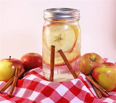 Apple Cinnamon Detox Weight Loss by Fruit Infused Water Infused Water Recipes For Weight Loss