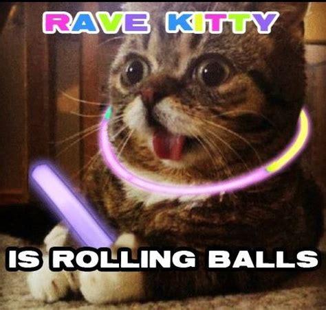 Raver Meme - xd edm rave wantickets edm memes pinterest