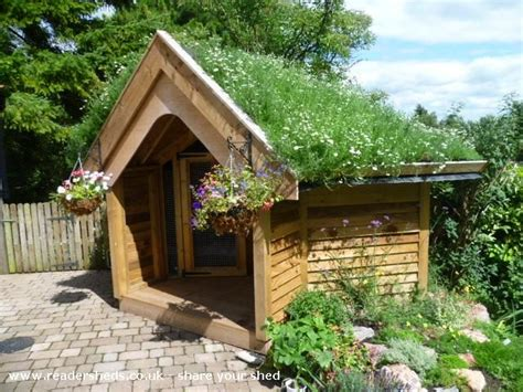 dog houses uk pin by readersheds on shed of the year 2014 entries pinterest
