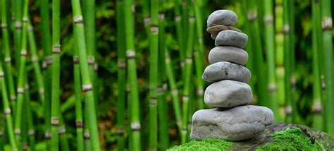 zen images zen images gratuites sur pixabay