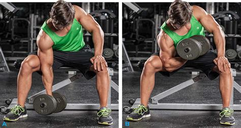 Standing Concentration Curl by The 10 Best Exercises For A Full Body Workout