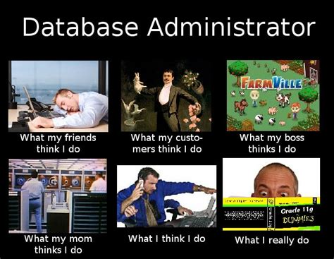 Memes Database - database administrator quotes image quotes at hippoquotes com