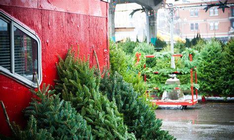 balsam fir fir montreal s public markets