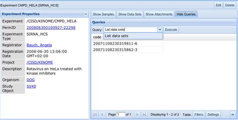 query design meaning custom database queries openbis documentation rel 13 04