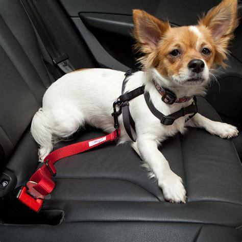 puppy seat belt car seat belt pink
