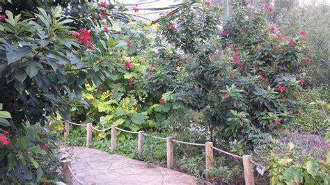 Really Enjoyed This Botanical Gardens Corpus Christi