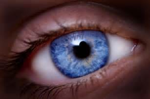 blue eye color 42 geneticists uncover the origin of blue