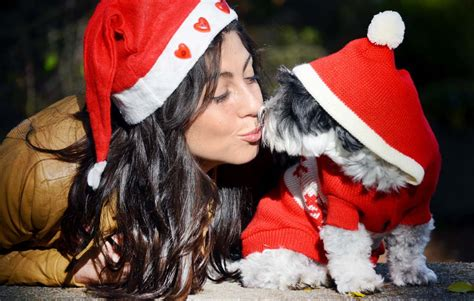 let s talk last minute christmas diy gifts for dog lovers