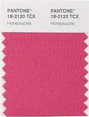 design junkie meaning pantone s color of the year honeysuckle
