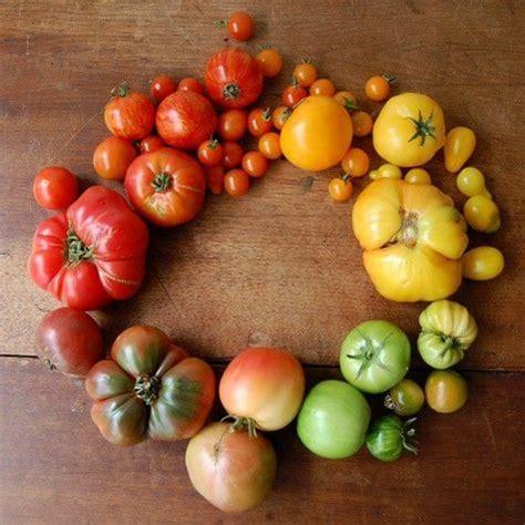 Tomat Multi Color multi colored tomato vegan food