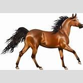 Running Horse Clipart - Clipart Kid