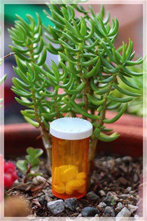 Coleman Rapid Benzo Detox by Benzodiazepine Detox Inspire Malibu