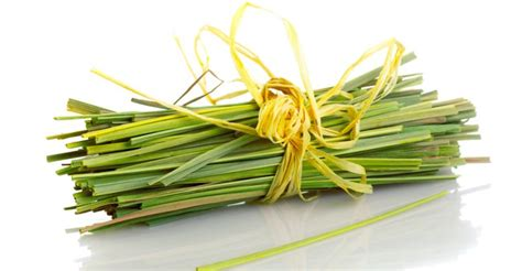 15 Surprising Health Benefits of Lemongrass - Natural Food ... Lemongrass Benefits Cancer