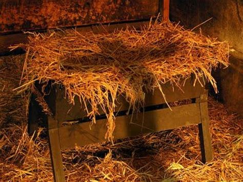 in the manger december 22 2013 there s a way in the manger seeds for the soul