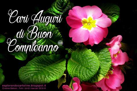 fiori per auguri di compleanno compleanno fiori 28 images frasi e immagini di buon