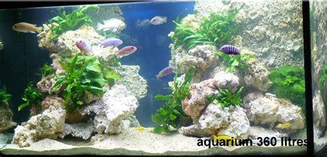 Decors Aquarium by D 233 Cors De Fond Tr 232 S Fins Aquaroche