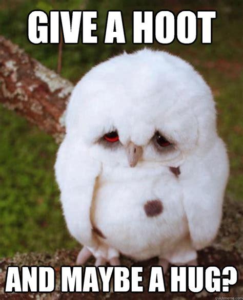 Give Me A Hug Meme - gets wet becomes sad sad owl quickmeme