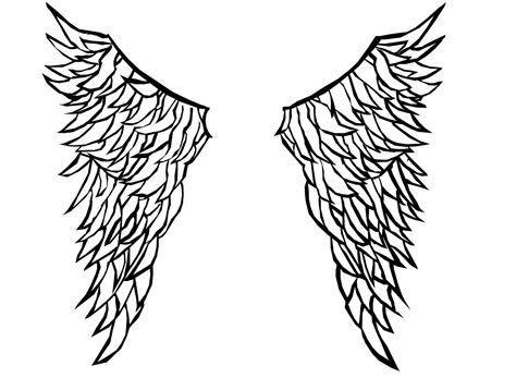 Simple Wing Outline by Simple Wings Outline Www Imgkid The Image Kid Has It