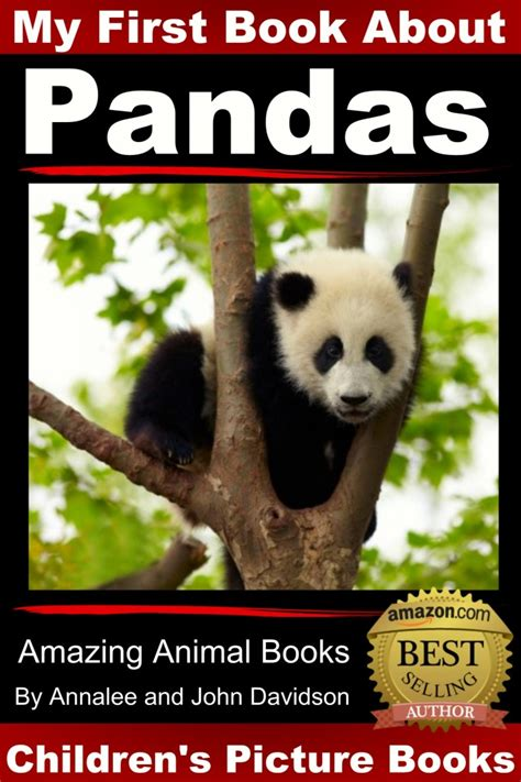 amazing picture books amazing animal books pandas picture book