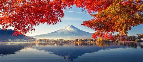 japan  beginners tokyo kyoto  mount fuji tours
