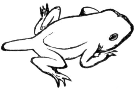 clipart etc toad clipart etc