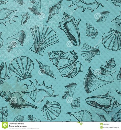 sketch paper pattern sea shells sketch pattern on paper background stock vector
